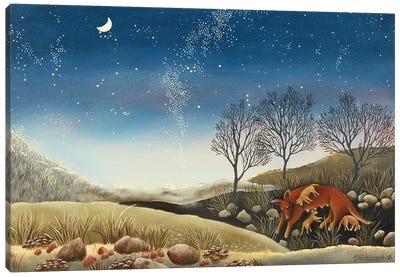 Under The Milky Way Canvas Art Print
