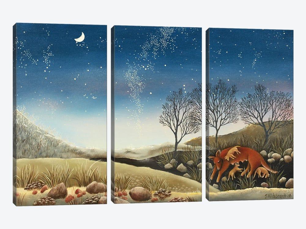 Under The Milky Way by Johanna Hildebrandt 3-piece Canvas Art Print