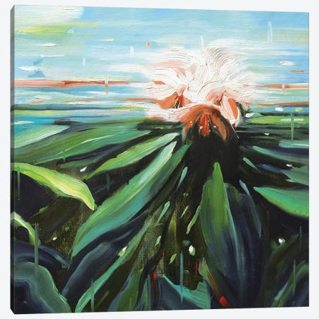 Exotica Canvas Print #JHM13} by Johnny Morant Canvas Print