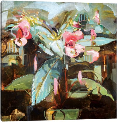 Himalayan Balsam Canvas Art Print