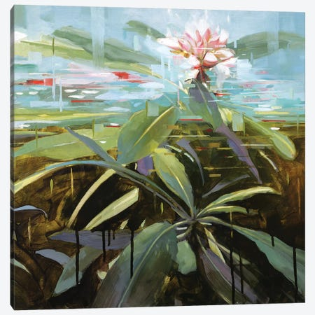 Rhododendron Canvas Print #JHM25} by Johnny Morant Canvas Art Print