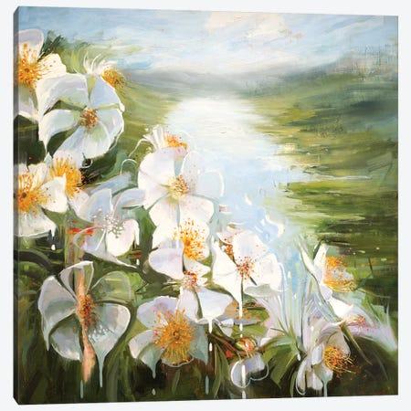 Rosa Multiflora Canvas Print #JHM26} by Johnny Morant Art Print