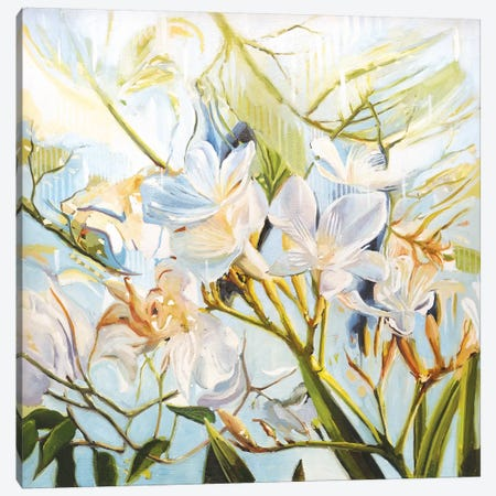 Wild Flowers Canvas Print #JHM29} by Johnny Morant Canvas Artwork
