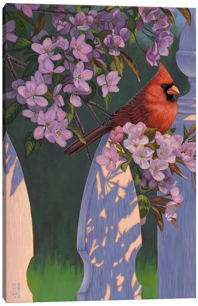 Crimson Evening Canvas Art Print
