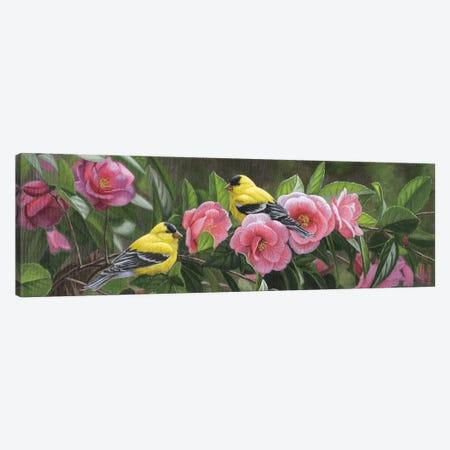Garden Gems 3-Piece Canvas #JHO18} by Jeffrey Hoff Canvas Print