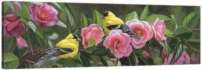 Garden Gems Canvas Art Print