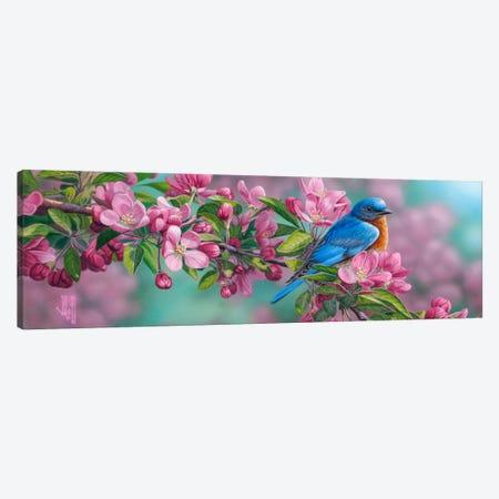 Garden Sapphire Canvas Print #JHO19} by Jeffrey Hoff Canvas Art Print