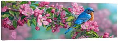 Garden Sapphire Canvas Art Print