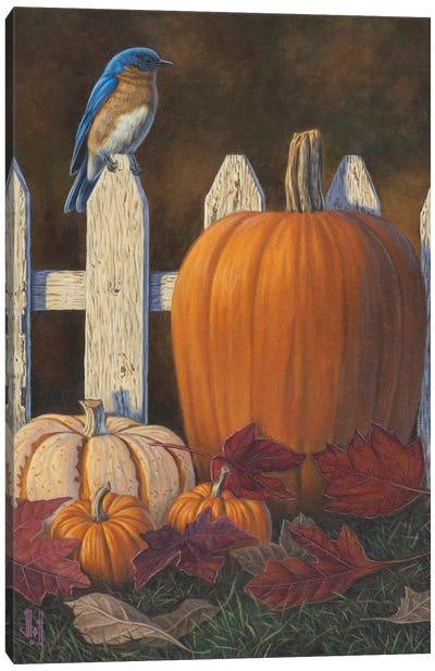 Autumn Bluebird Canvas Print #JHO1