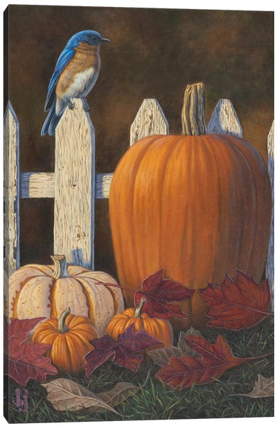 Autumn Bluebird Canvas Art Print