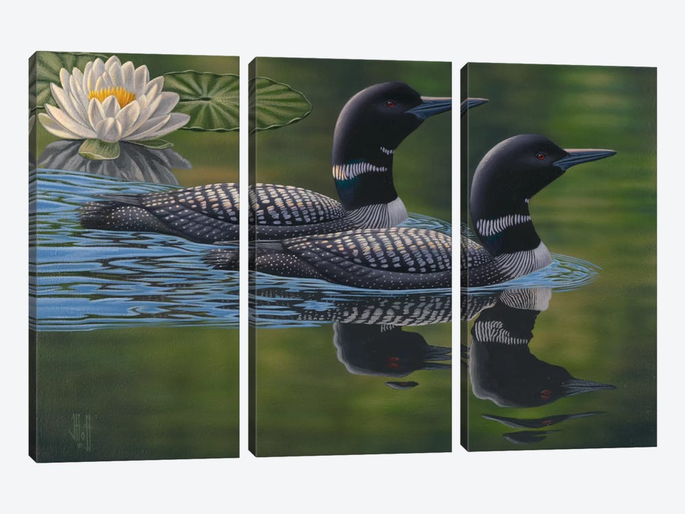 Gliding Loon Pair by Jeffrey Hoff 3-piece Canvas Wall Art