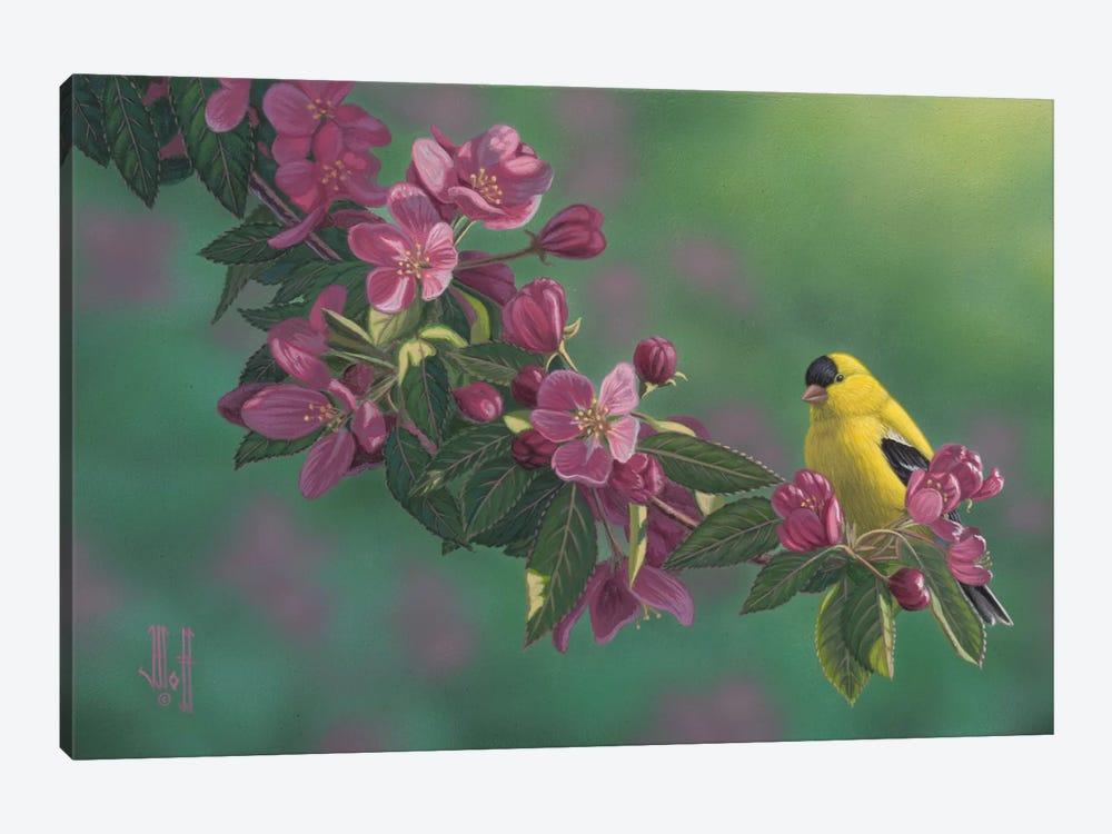 Gold & Pink by Jeffrey Hoff 1-piece Canvas Art Print