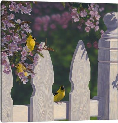 Golden Garden Gems Canvas Art Print
