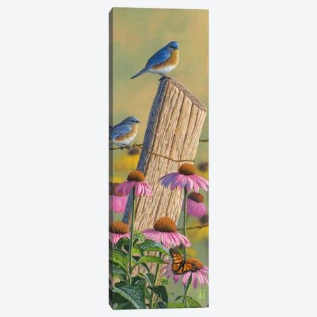 Monarchs Of The Prairie Canvas Print #JHO29} by Jeffrey Hoff Canvas Artwork