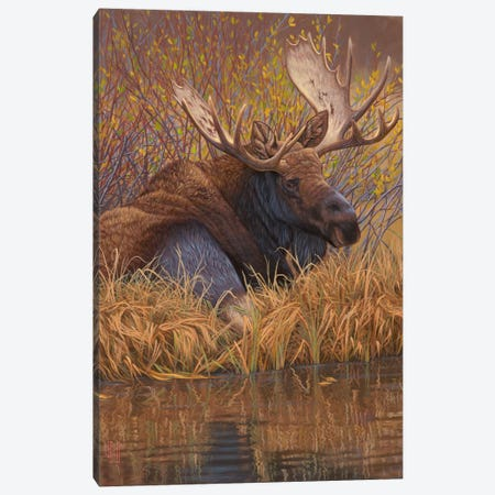 Nestled In Teton Canvas Print #JHO31} by Jeffrey Hoff Art Print