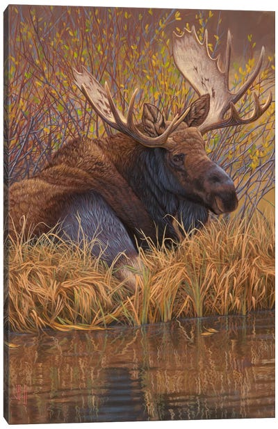 Nestled In Teton Canvas Art Print