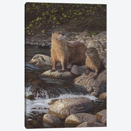 North American River Otters Canvas Print #JHO32} by Jeffrey Hoff Canvas Print
