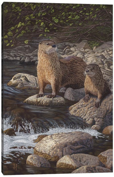 North American River Otters Canvas Art Print
