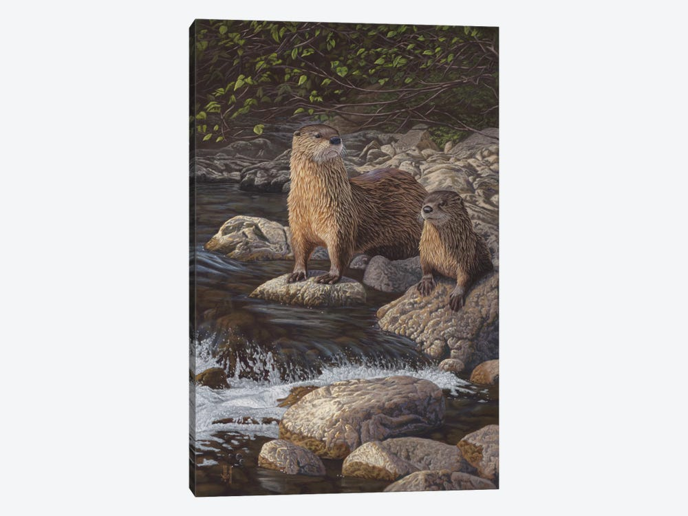 North American River Otters by Jeffrey Hoff 1-piece Canvas Art Print