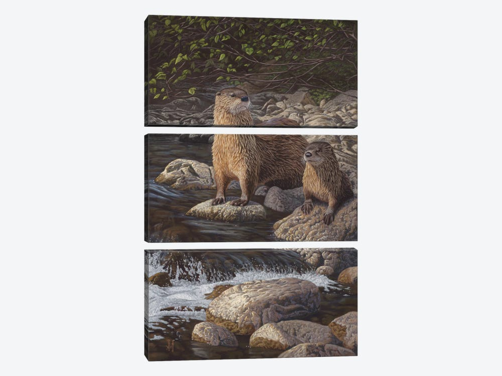 North American River Otters by Jeffrey Hoff 3-piece Canvas Print