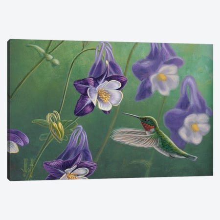 Ruby & Lavender Canvas Print #JHO40} by Jeffrey Hoff Canvas Wall Art