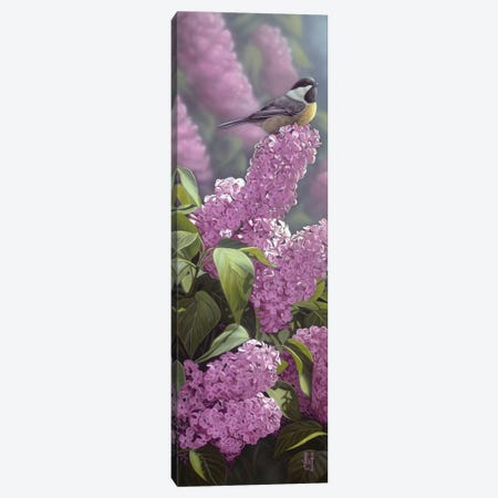 Scents Of Spring Canvas Print #JHO41} by Jeffrey Hoff Canvas Artwork