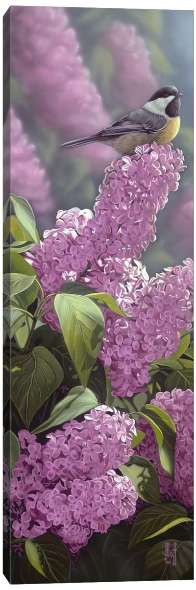 Scents Of Spring Canvas Art Print