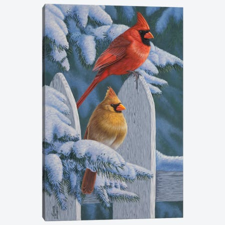 Snow Cardinals Canvas Print #JHO42} by Jeffrey Hoff Canvas Art