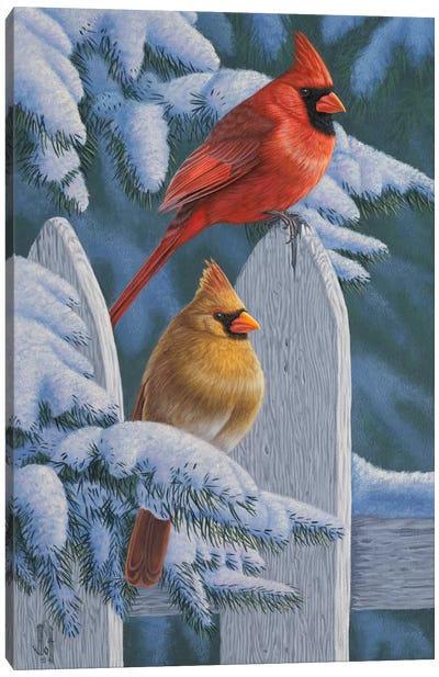 Snow Cardinals Canvas Art Print