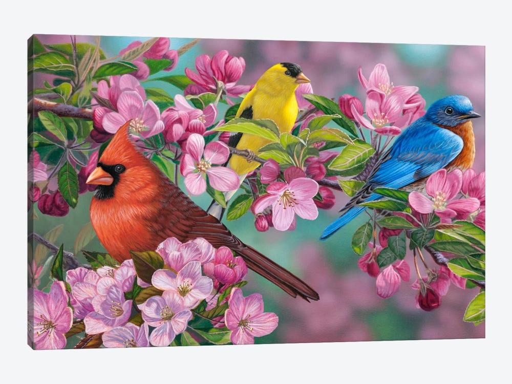 Songbird Colors by Jeffrey Hoff 1-piece Canvas Art Print