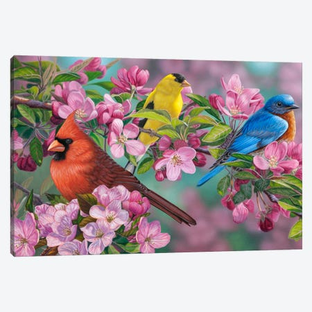 Songbird Colors Canvas Print #JHO43} by Jeffrey Hoff Canvas Art