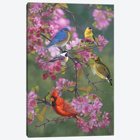 Birds & Blossoms Canvas Print #JHO4} by Jeffrey Hoff Canvas Print