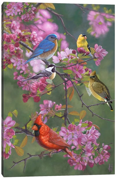 Birds & Blossoms Canvas Art Print