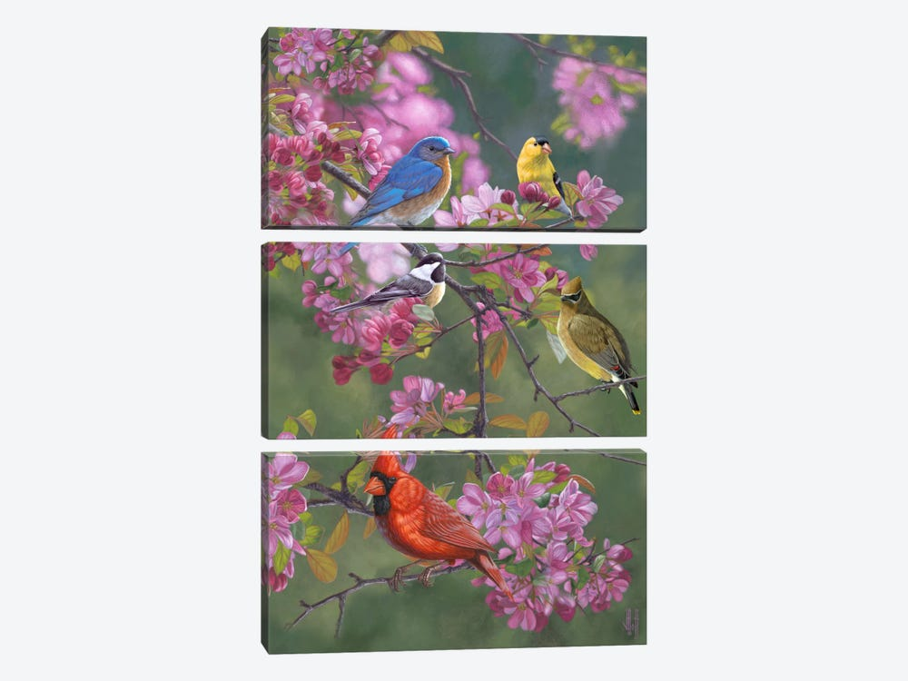 Birds & Blossoms by Jeffrey Hoff 3-piece Canvas Art