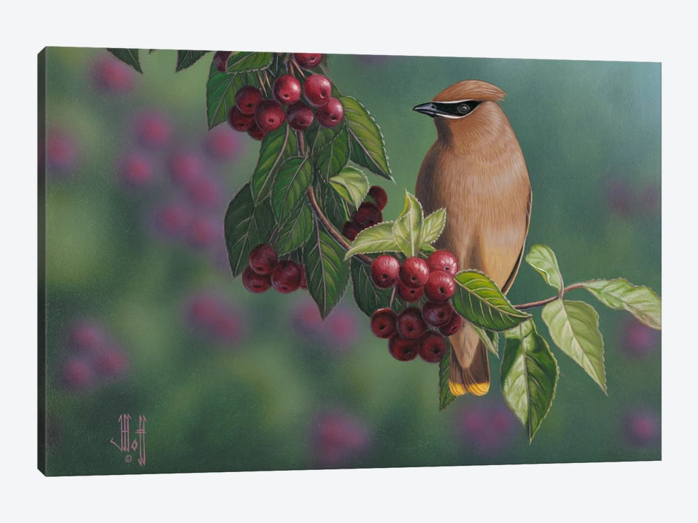 Waxwing & Berries 1-piece Canvas Art Print