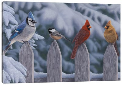 Winter Birds Canvas Art Print