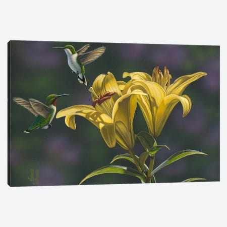 Yellow Lilies Canvas Print #JHO56} by Jeffrey Hoff Canvas Artwork