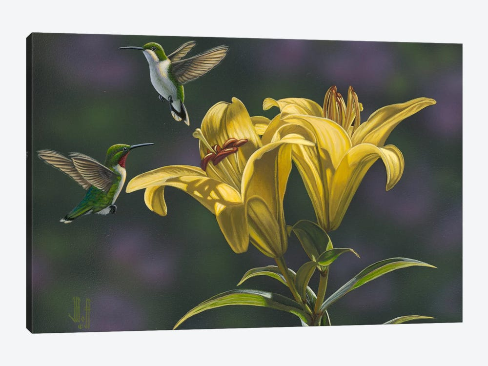 Yellow Lilies by Jeffrey Hoff 1-piece Canvas Print