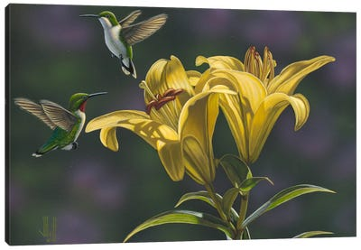 Yellow Lilies Canvas Art Print