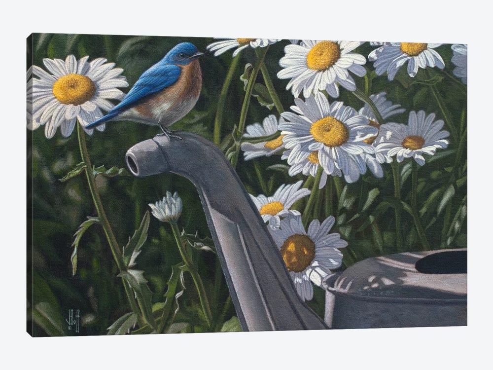Bluebird & Daisies by Jeffrey Hoff 1-piece Canvas Art Print