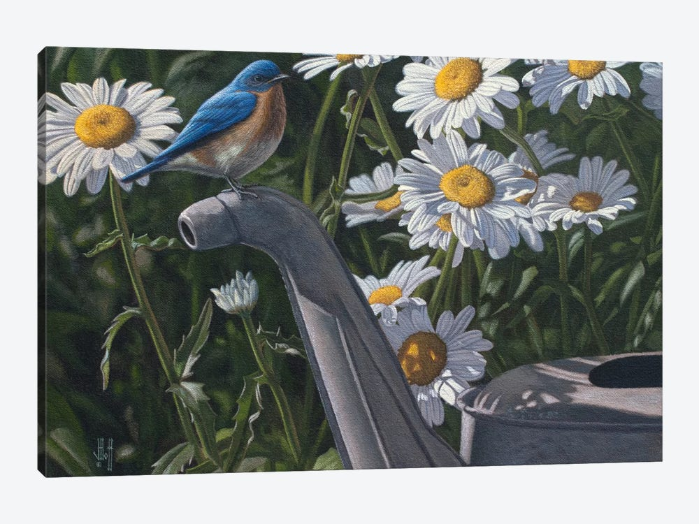 Bluebird & Daisies by Jeffrey Hoff 1-piece Canvas Art Print