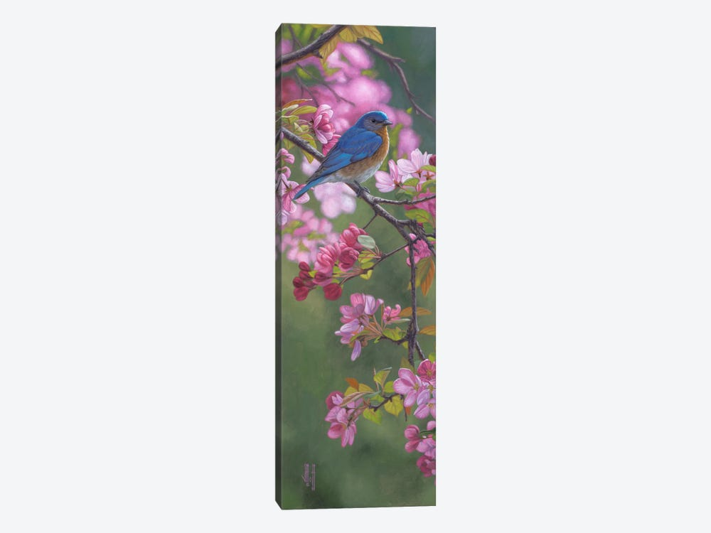 Bluebird & Pink Blossoms by Jeffrey Hoff 1-piece Canvas Wall Art