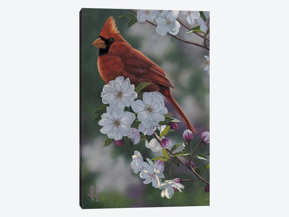 Cardinal & Spring Blossoms by Jeffrey Hoff 1-piece Canvas Artwork