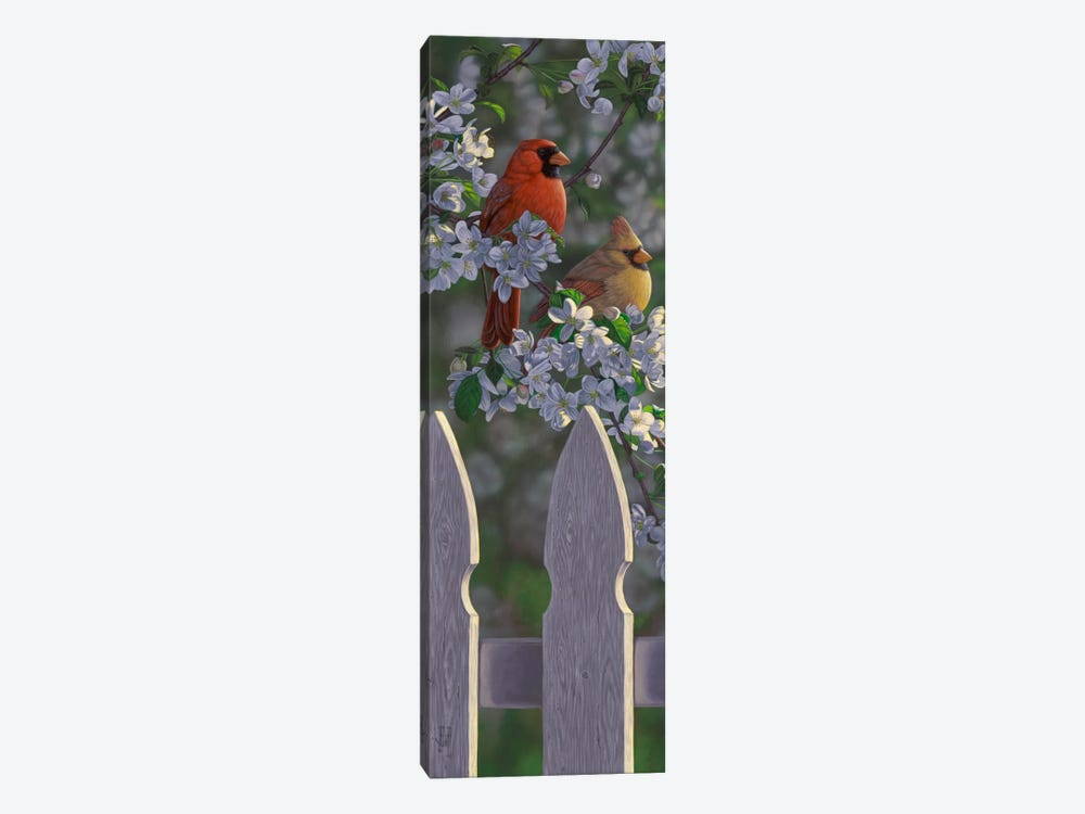 Cardinals & Apple Blossoms by Jeffrey Hoff 1-piece Canvas Art Print