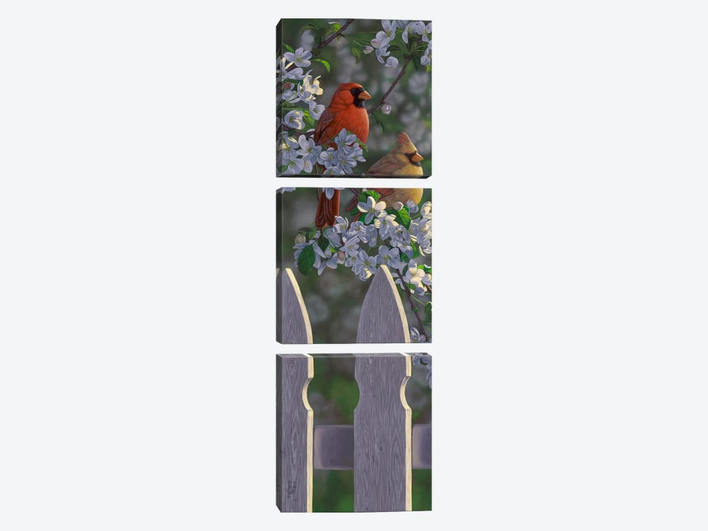 Cardinals & Apple Blossoms by Jeffrey Hoff 3-piece Art Print