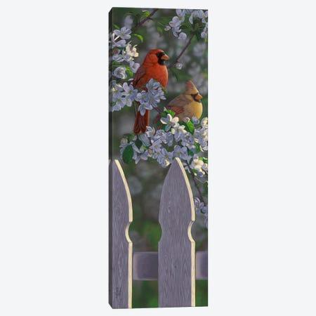 Cardinals & Apple Blossoms Canvas Print #JHO9} by Jeffrey Hoff Canvas Artwork
