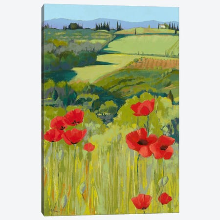 Field Of Poppies Canvas Print #JHP2} by Jane Henry Parsons Canvas Art