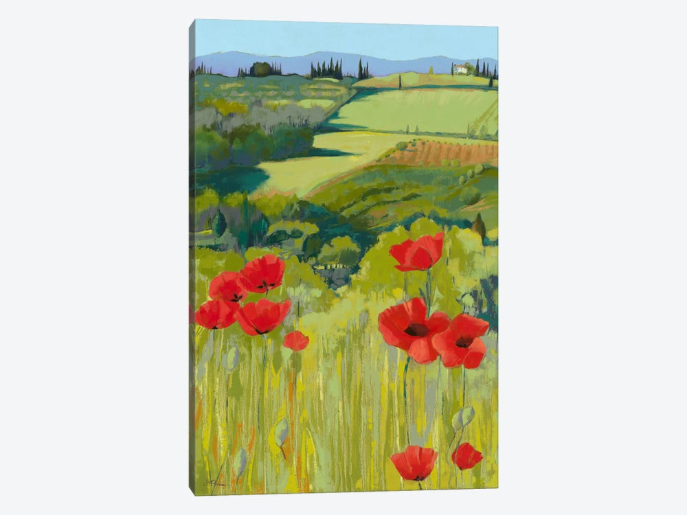 Field Of Poppies by Jane Henry Parsons 1-piece Canvas Art Print