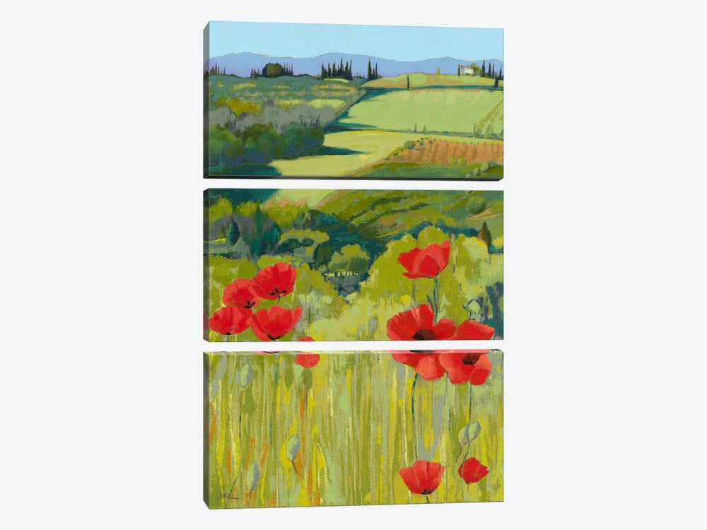 Field Of Poppies by Jane Henry Parsons 3-piece Canvas Print