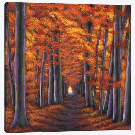 Autumn Path Canvas Print #JHR10} by Johnathan Harris Canvas Art